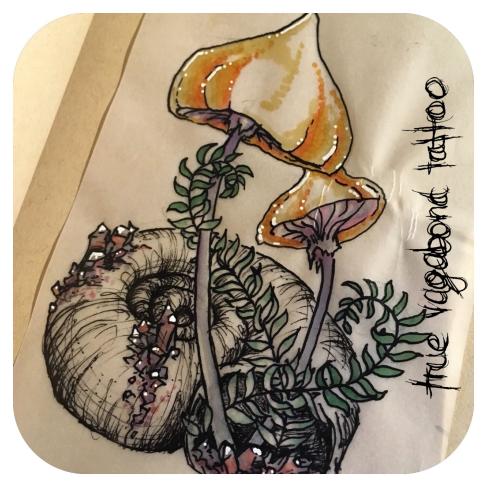 magic mushroom with crystals